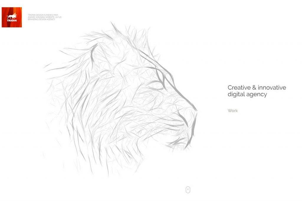 Trionn Design - Creative graphics and web design company in India