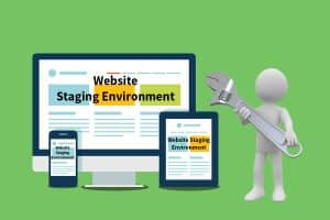 Website Staging Environment