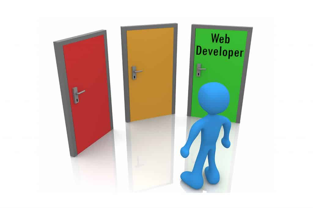 Know if You Want Become Web Developer or Programmer